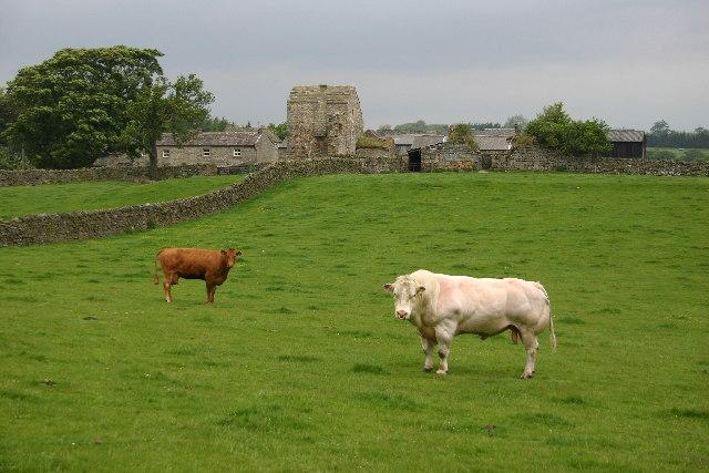 Scargill Castle
