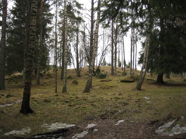 Liinmaa Castle