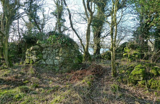 Martnaham Castle